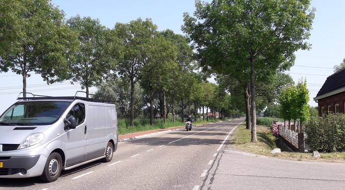 Auto's en motoren op de Tholenseweg bij Halsteren, waar 60 per uur als maximum geldt, rijden volgens verontruste omwonenden vaak boven de 100. Witte suggestiestroken moeten de weg smaller doen ogen en de snelheid dempen.