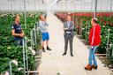 Bezoek van europarlementarier Bert-Jan Ruissen aan de kassen van de gebroeders Sonneveld van Sonneveld Hydrangea.