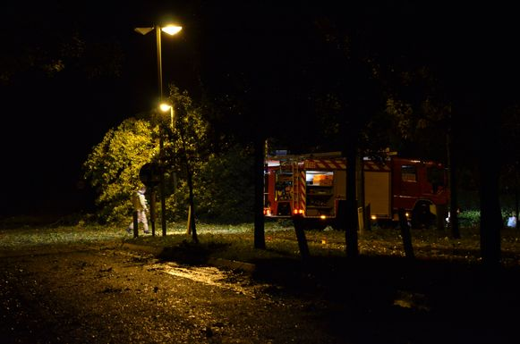 Een boom waait op de elektriciteitsleidingen in de Veurnestraat in De Panne.