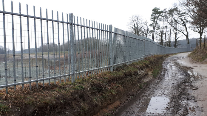 Gaas tussen het hekwerk rond de Steengroeve in Winterswijk moet voorkomen dat reeën vast komen te zitten. Dit hek is van Sibelco. Staatsbosbeheer plaatst op een later moment ook gaas.