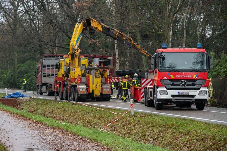 Een vrachtwagen geladen met biggen is vrijdagochtend rond 5.30 uur gekanteld op de Essensteenweg. De rijbaan is volledig afgesloten. Verschillende biggen hebbben het ongeval niet overleeft.