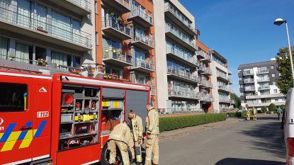 Brandweer opgeroepen voor rookontwikkeling in appartementsgebouw, bewoonster had kookpot vergeten op brandend fornuis