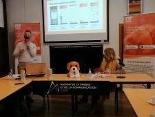 Animal Research, l'app liégeoise pour signaler et retrouver les animaux perdus