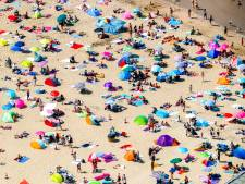 De zomer is terug en een hittegolf lijkt vrijwel onvermijdelijk