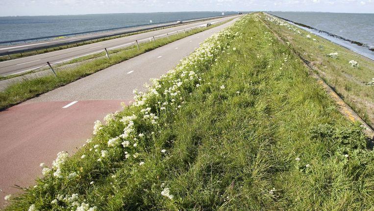 De Afsluitdijk. Beeld anp