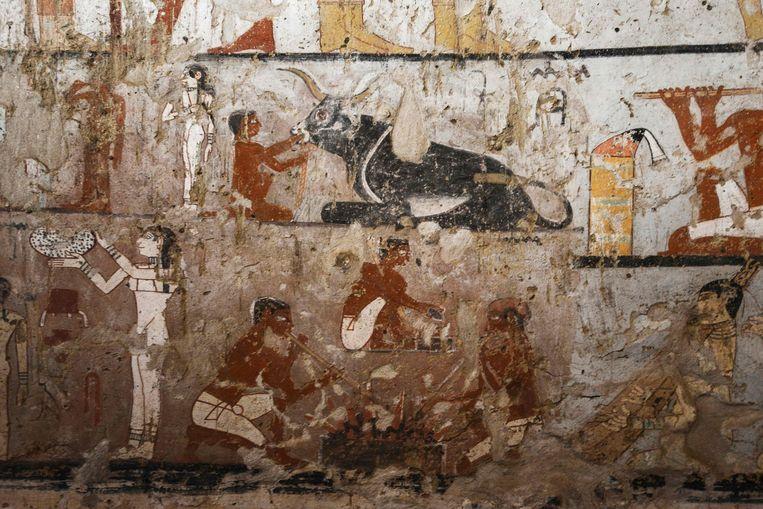 Haptet stond dicht bij het Egyptische koningshuis en was waarschijnlijk een priesteres.