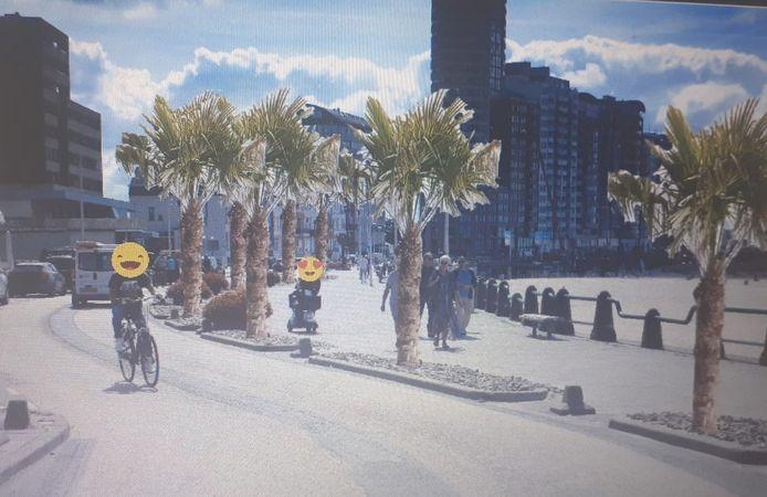 Iedereen wordt vrolijk van palmen op de boulevard verwacht de SGP.