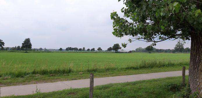 Het gebied waar een bedrijventerrein moet verrijzen in Rijssen met op de voorgrond de Maisweg.