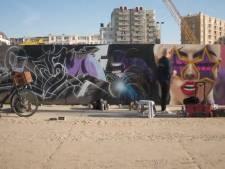 Artiesten toveren 400 meter lange schutting om tot kunstwerk