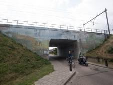 Vijftien mille voor nieuwe beschildering van Westervoorts viaduct