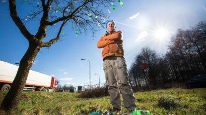 """""""Na de plasticbomen, nu ook de rechtszaken"""""""
