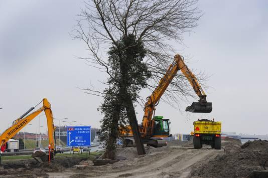 De boom van de buizerd wordt gestut om te voorkomen dat hij omvalt.