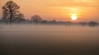 Code oranje: KMI waarschuwt voor zeer dichte mist