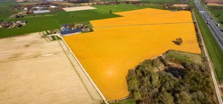 Twenterand met LTO om tafel na boer die grasland dood spoot met Roundup