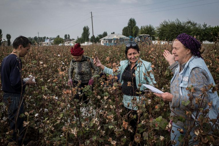 Volgens Jelena Oerlajeva, de bekendste mensenrechtenactivist van Oezbekistan, doet de nieuwe regering harder haar best om zulke zaken te verbergen. 'Ze proberen het imago van de president te verbeteren om buitenlands geld binnen te halen.' Beeld Yuri Kozyrev / Noor