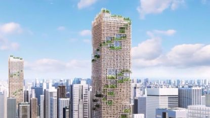 Wolkenkrabber van hout