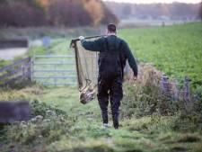 Vervuild afvalwater stroomt nog steeds Berkel in: reddingsactie voor vissen