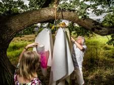 In Arnhem ontpopt zich een vlinderpad dat via de Betuwe leidt naar Nijmegen