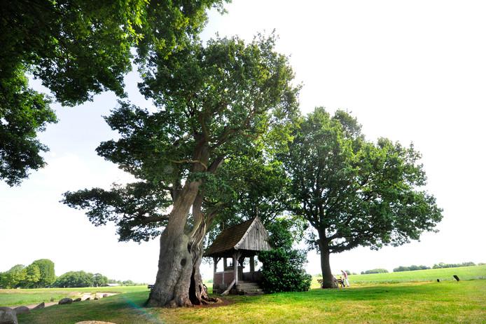 De Kroezeboom met de kleine veldkapel