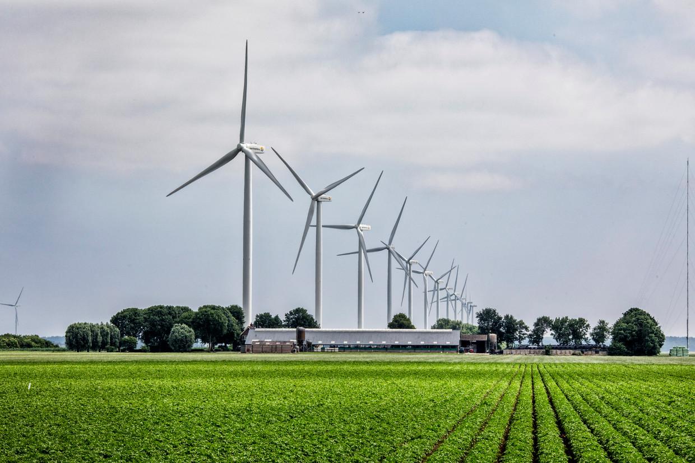 Windmolenpark in de gemeente Zeewolde.