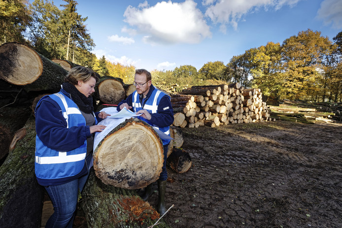 Anna Kramer (links) en Serge Polak van Waterschap de Dommel bestuderen het plan voor een nieuwe regionale waterkering.