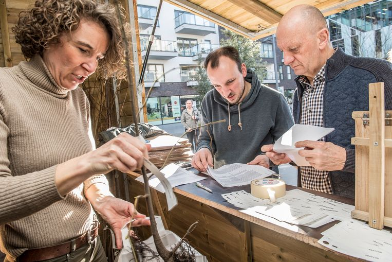Vrijwilligers van de groep Meer Bomen In Roeselare delen gratis liefdesbomen uit