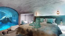 """Hotel midden in Pairi Daiza is volgens bioloog Dirk Draulans meer dan verkooppraatje: """"Die dieren kunnen elke vorm van afleiding gebruiken"""""""