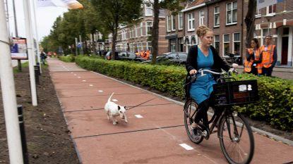 Pilootproject fietspad van gerecycleerd plastic krijgt vervolg