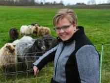 VVD over crisis Veere: 'Niet eerst praten, direct scheiden'