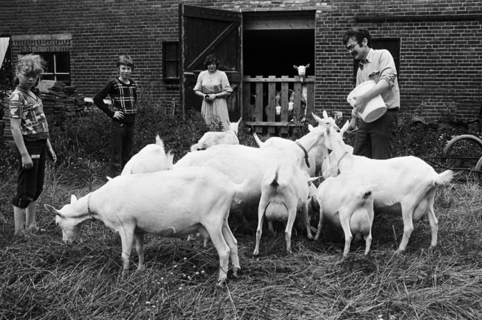 André, Dorothé en hun kinderen Joost en Anne op de geitenboerderij aan de Oude Baan in Hulten, zomer 1979.