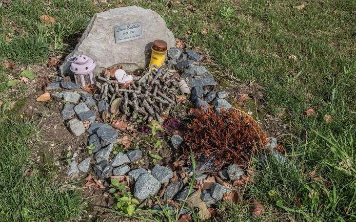 Het grafje van Bubbels op dierenbegraafplaats 't Jagtveld in Heumen.