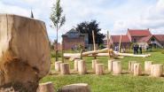 Gemeente lonkt naar weide aan Terwalle voor aanleg natuurspeelpark