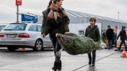 """Kerstboomkwekers in de clinch met Ikea: """"Meubelgigant vervuilt de markt in België"""""""