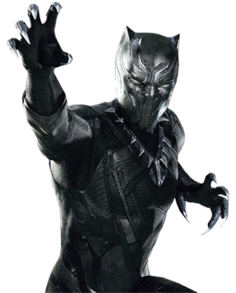Black Panther Beeld RV
