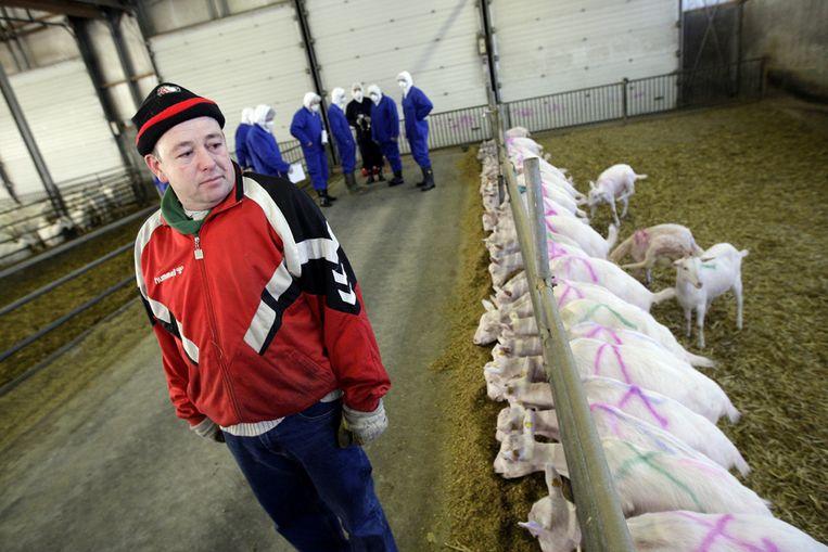 Voorbereidingen op de ruiming op een geitenboerderij (ANP) Beeld