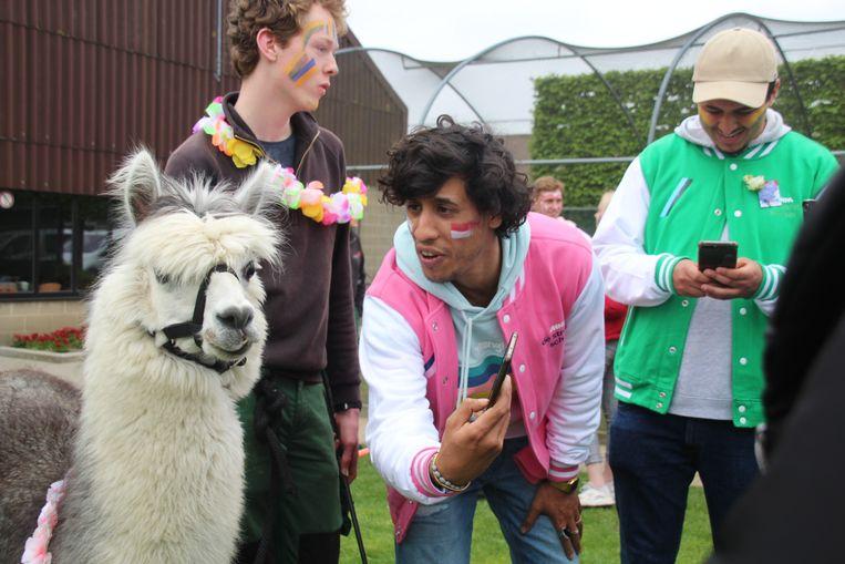 Saïd wil een selfie met een lama.
