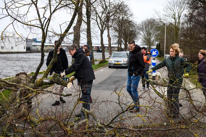 Buurtbewoners gaan met een kettingzaag aan de slag om deze boom te verwijderen.