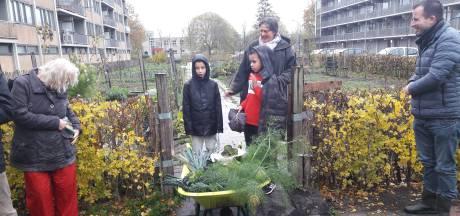 Dubbele winst voor Gemeenschapstuin CitySeeds in Middelburg