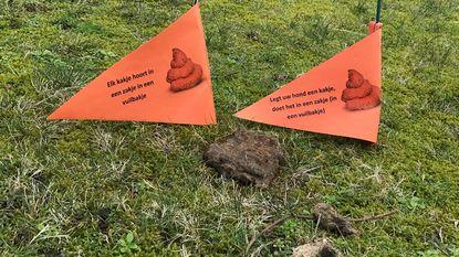 Vlaggetjes geplaatst tegen hondenpoep