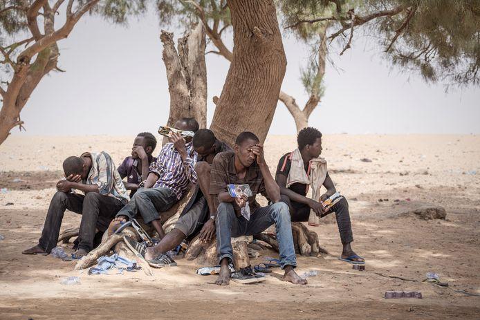Archiefbeeld: een groep migranten die door smokkelaars werd achtergelaten in de Sahara.