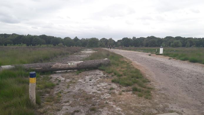 Het pad ligt al over de Regte Heide, de schelpen ontbreken nog.