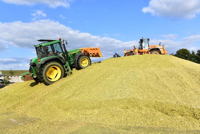 Boeren in de Betuwe hebben recht op een droogteschaderegeling, meent Redbreast, dat boeren juridisch bij wil staan.