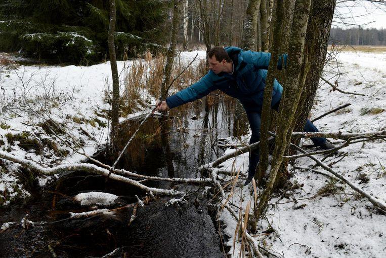Nikita Jakoebovski (27) de wolvenliefhebber: 'Als ik door het bos wandel, denk ik aan filosofie, aan problemen. Aan de relatie met mijn vriendin.' Beeld Yuri Kozyrev/ Noor