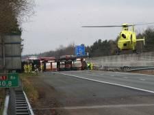 Heldin die trucker hielp na bizarre crash op A1 gevonden: 'Ze verdient een standbeeld'