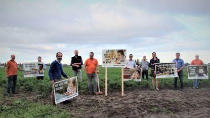 """""""Hier groeit de soep van morgen"""": nieuwe landbouwcampagne afgetrapt met opvallende slogans"""