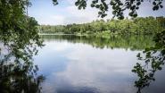 Schulensmeer krijgt tien hectare bos terug, linkse partijen strijden verder voor de Groene Delle