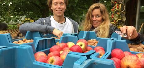 Treedom Festival combineert biologisch eten met eigentijdse muziek