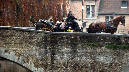 """Mailbox van burgemeester overspoeld met smeekbedes: """"Laat paardenkoetsen niet toe met dit weer"""""""