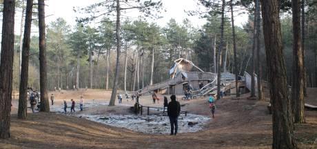 Column: 'File' in het bos