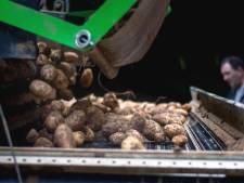 Zorgen bij Nederlandse boeren over Duitse lockdown